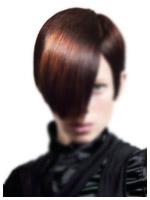 Long hair shop - качественные волосы